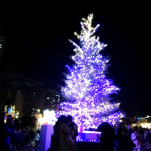 光の饗宴クリスマスツリー